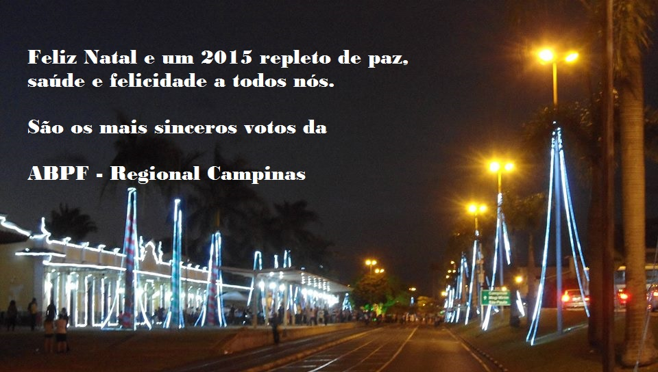papainoel 2014f